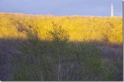 前山の影:K20D/SIGMA APO 70-300 F4-5.6 DG MACRO